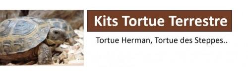 Kits Tortue Terrestre