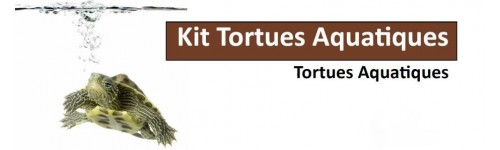 Kits Tortue Aquatique